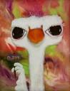 Snarky Ostrich - thumbnail